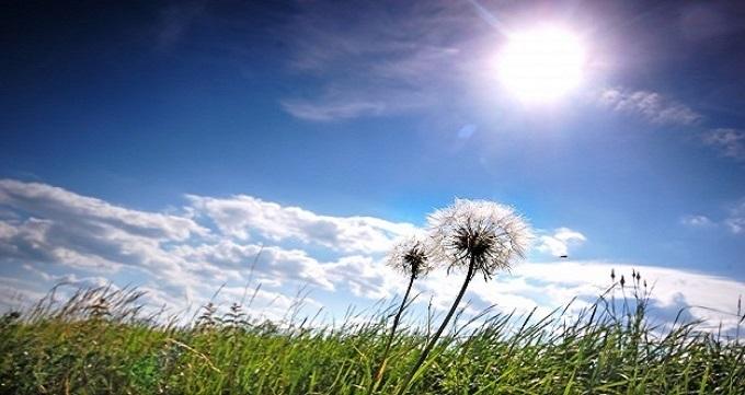 درمان و ترک ماده مخدر گل
